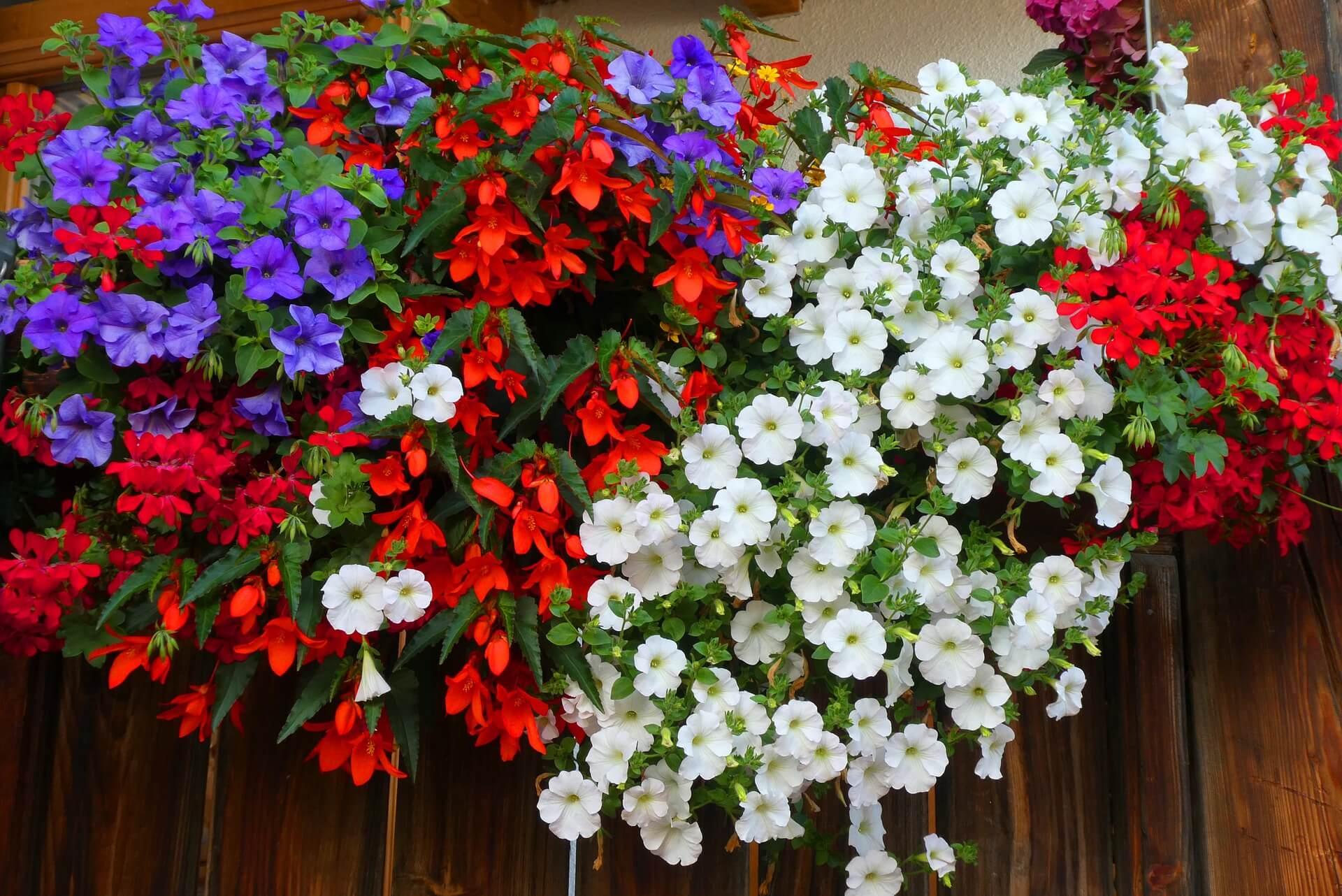 comprar jardineras baratas